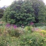 Foto de Howick Hall Gardens