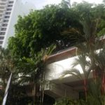 walkway-from-beach-side-to-tower-holiday-inn-penang_large.jpg
