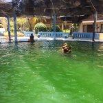 Foto de Melka Excelsior Resort Hotel