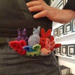 pocket bunnies