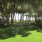 Garten Richtung Meer (Zimmerblick)