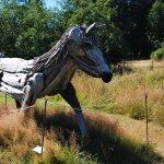 San Juan Islands Sculpture Park의 사진