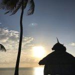 Photo de The Palms