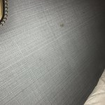 Headboard stains, looks like blood