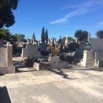 Cavtat Cemetery Foto