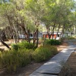 Photo of Alborea Eco Lodge Suites