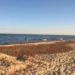 Algues sur la plage privée