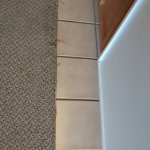 Fraying carpet everywhere