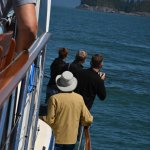 Waiting for whale to resurface, Archipelago Wildlife Cruises, Ucluelet