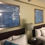 Photo of SpringHill Suites Chicago Naperville/Warrenville