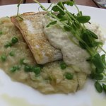 Salmon with green pea risotto
