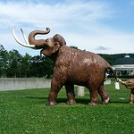 Photo de The Churui Museum of Naumann's Elephant