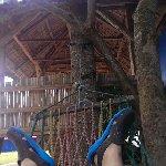 Skip's Beach Resort Photo