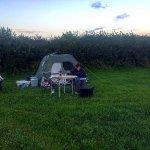 Walnut Tree Farm Camping & Bunk House Photo