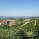 Photo of Trattoria Nelle Vigne
