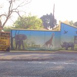 Street View of Africa Zoo Lodge