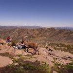 Photo of Parque Regional de la Sierra de Gredos