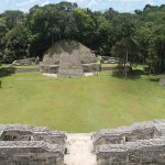 View from the top of ruins at Caracol