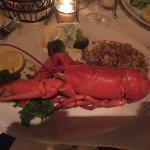 1 1/2 lb lobster