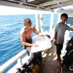 Photo of Dive Komodo - Day Trips