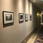 Photo de Hotel Sans Souci Wien