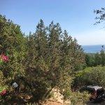 vanaf het hogere gedeelte van de camping heb je uitzicht op zee