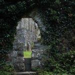 Muckross Abbey Foto