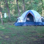 Foto de Cedars of Lebanon State Park