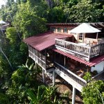 Outdoor view of Belize Tree Houses