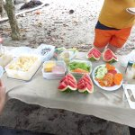 Fruit, pasta salad with tuna, potato salad, ingredients for sandwiches. Iced tea and punch.