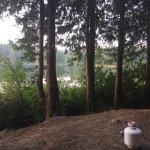 Camp Morton Provincial Park Picture