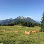 Alpina Family, Spa & Sporthotel Foto