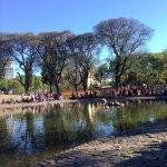 Billede af Parque Centenario