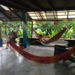 The place to stay... in the hammock of the dining- and living-room :-)
