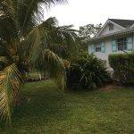 Photo de Oualie Beach Resort