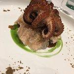 Polpo sulla roccia (Octopus on the rock)