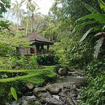 Photo of Bali Eco Stay Bungalows