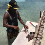 cleaning lion fish for lunch