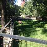 Photo of Zoo Buenos Aires