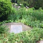 Shakespeare Garden in Central Park
