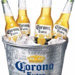Lots of beers available including Corona