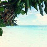 Photo of Similan Islands National Park