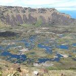Gran Reserva de agua y exuberante vegetación