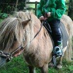 Killiechronan Pony Trekking Isle of Mull Foto