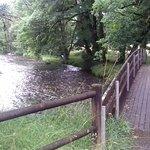 صورة فوتوغرافية لـ VVF Villages Nedde