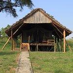 Photo of Bwana Tembo Safari Camp