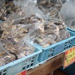 牡蠣がたくさん