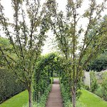 The Apple Arch