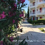 Samos, Hydrele Beach Hotel, June 2017