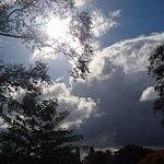 FB_IMG_1477029042359_large.jpg
